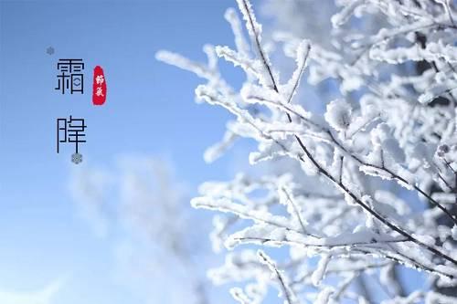 冬补不如补霜降!霜降时节该吃些什么?