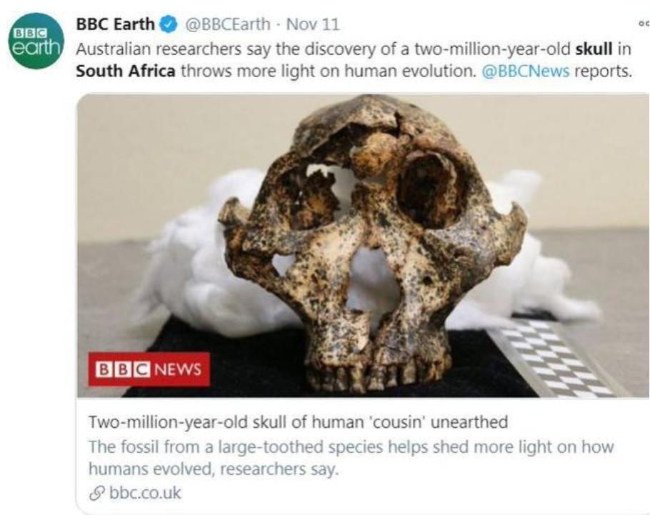 200万年前头骨化石 南非发现的200万年前的头骨