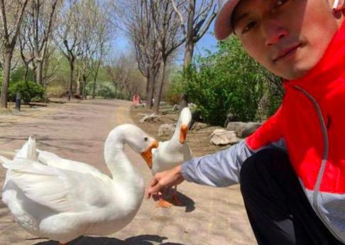 谢霆锋晒与鹅自拍  十分搞笑