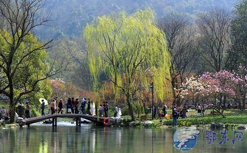杭州进入春季旅游旺季!公交站点调整 春游专线开通