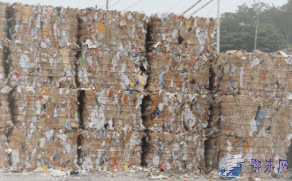 1吨废纸砸中员工,不治身亡!