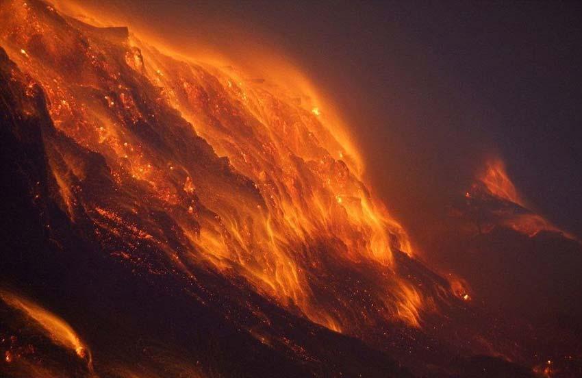 澳大利亚山火  总理哭了