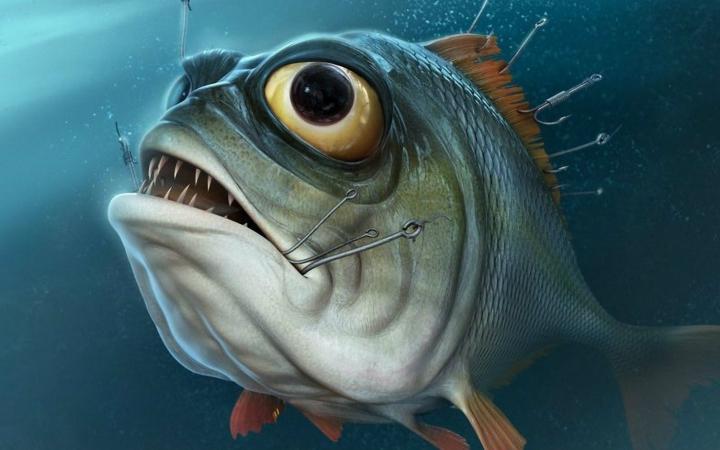 世界上最大的食人鱼