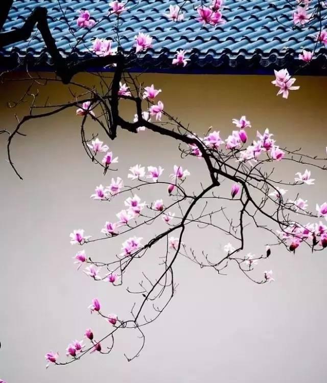 描写春分的诗词有哪些?