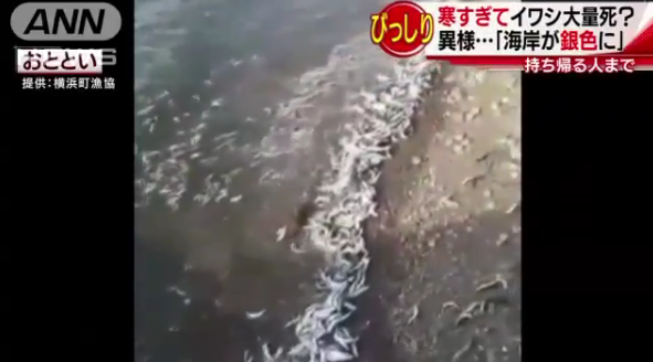 日本海岸诡异现象 现异样光景