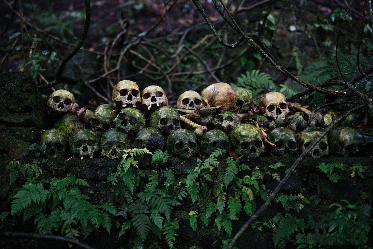 巴厘岛亡灵之村  肉体不腐