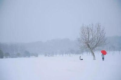 南京融雪盐告急 雪灾严重