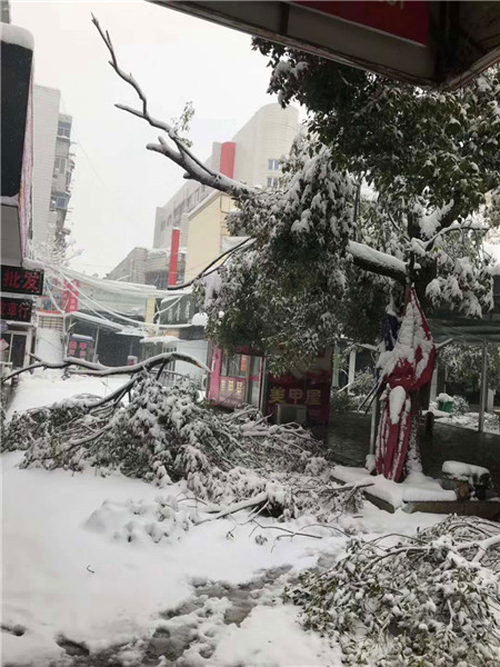 暴雪致13人死亡  安徽启动IV救灾