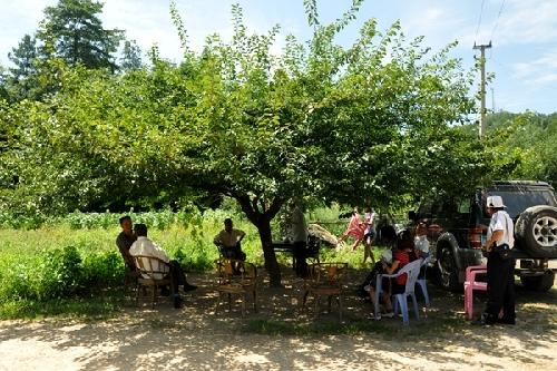 农村人常用避暑方式盘点!