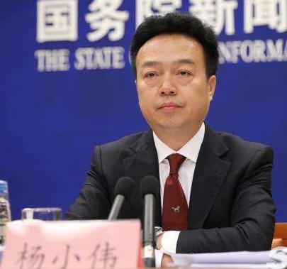 杨小伟任中央网信办副主任 杨小伟简历(图)