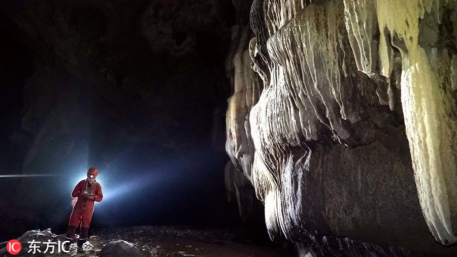 洞穴现珍稀水生物 极为罕见