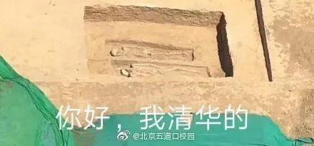 清华大学发现古墓 清华大学加入古墓派