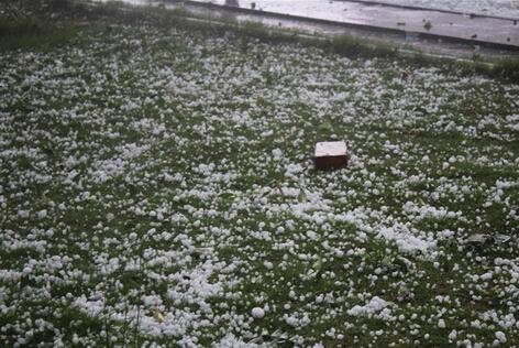 济南冰雹1人死亡 冰雹荔枝那么大!