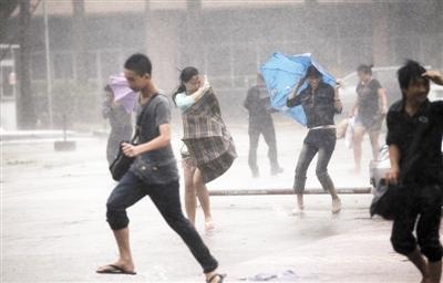 台风袭广东  台风来袭女子被大树砸死!